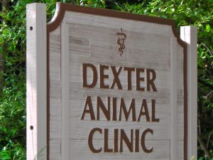 Dexter Animal Clinic (Michigan)
