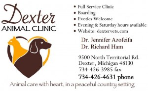 Dexter Animal Clinic